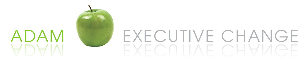 executivechange.de